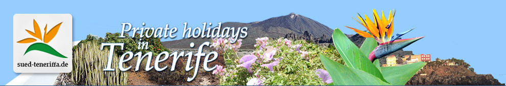 Tenerife south west holidays on finca cottage and villa