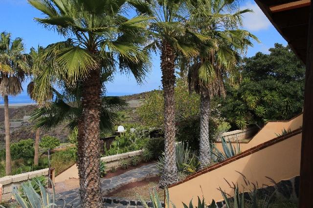 Gepflegter tropischer Garten
