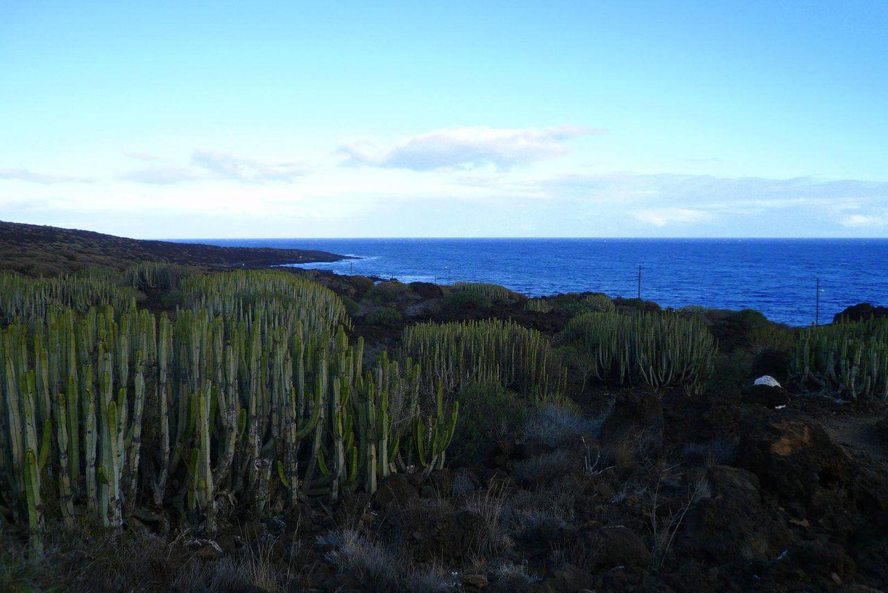Fotos Barranco del Infierno, klick hier